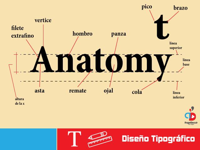 Anatomia-de-la-tipografia-2