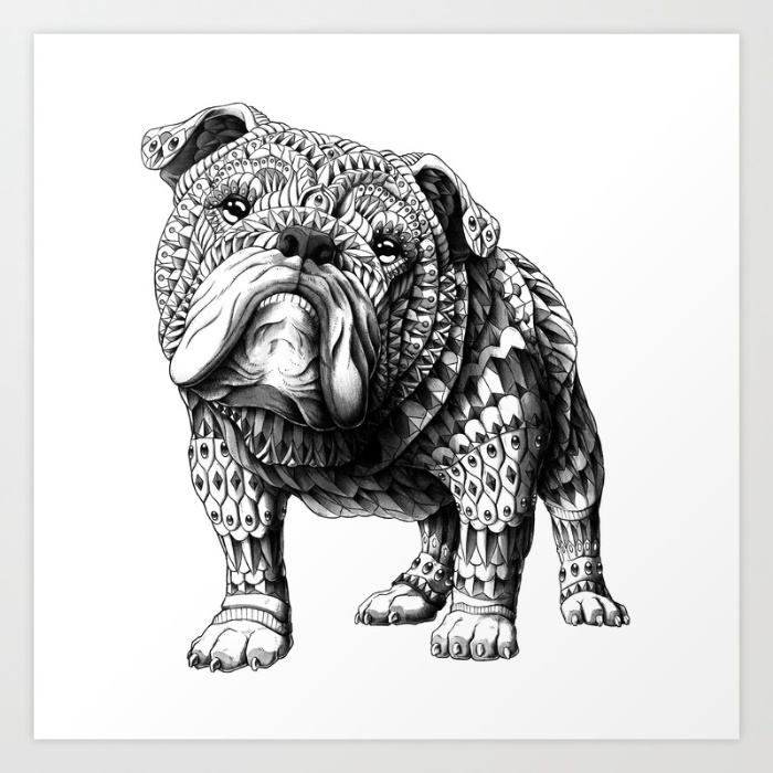 1-english-bulldog-r76-prints