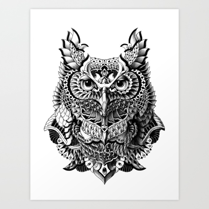 5-century-owl-prints