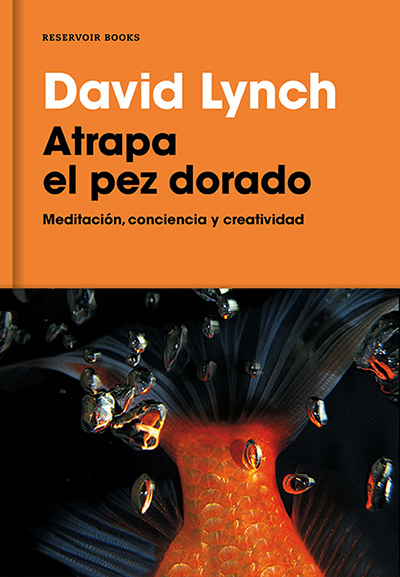 Atrapa el pez dorado por David Lynch en iBooks