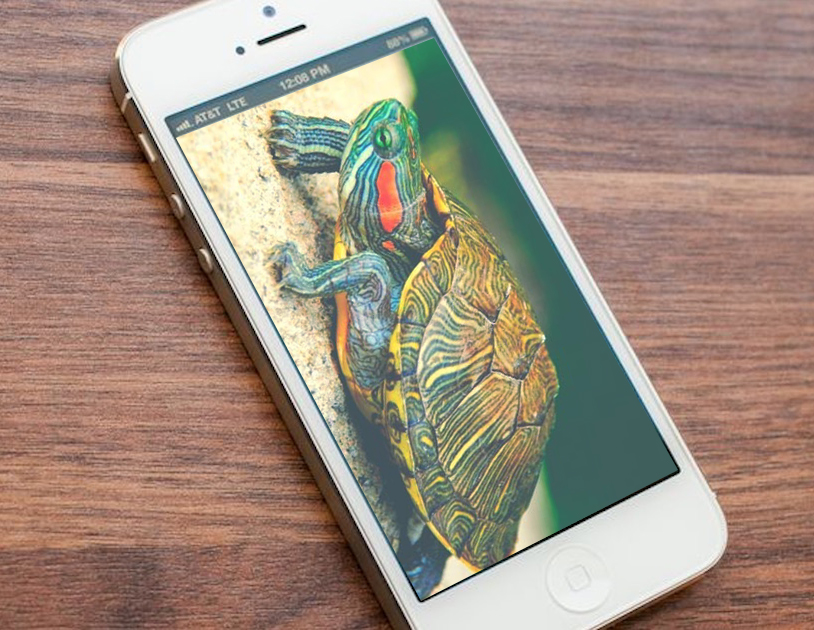 Apple se disculpa por hacer más lentos sus iPhones