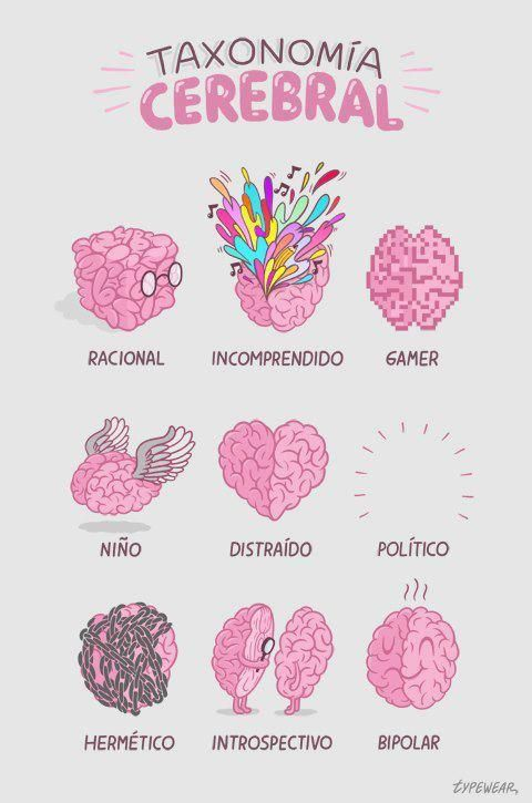 Taxonomia cerebral - Typewear - illustration