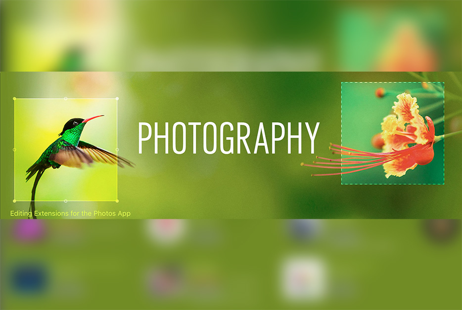 15 apps de fotografía que recomienda la Mac App Store