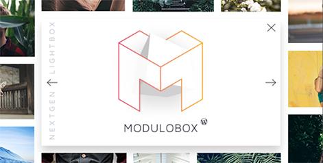 ModuloBox - NextGen Lightbox Plugin for WordPress by Theme-one   CodeCanyon