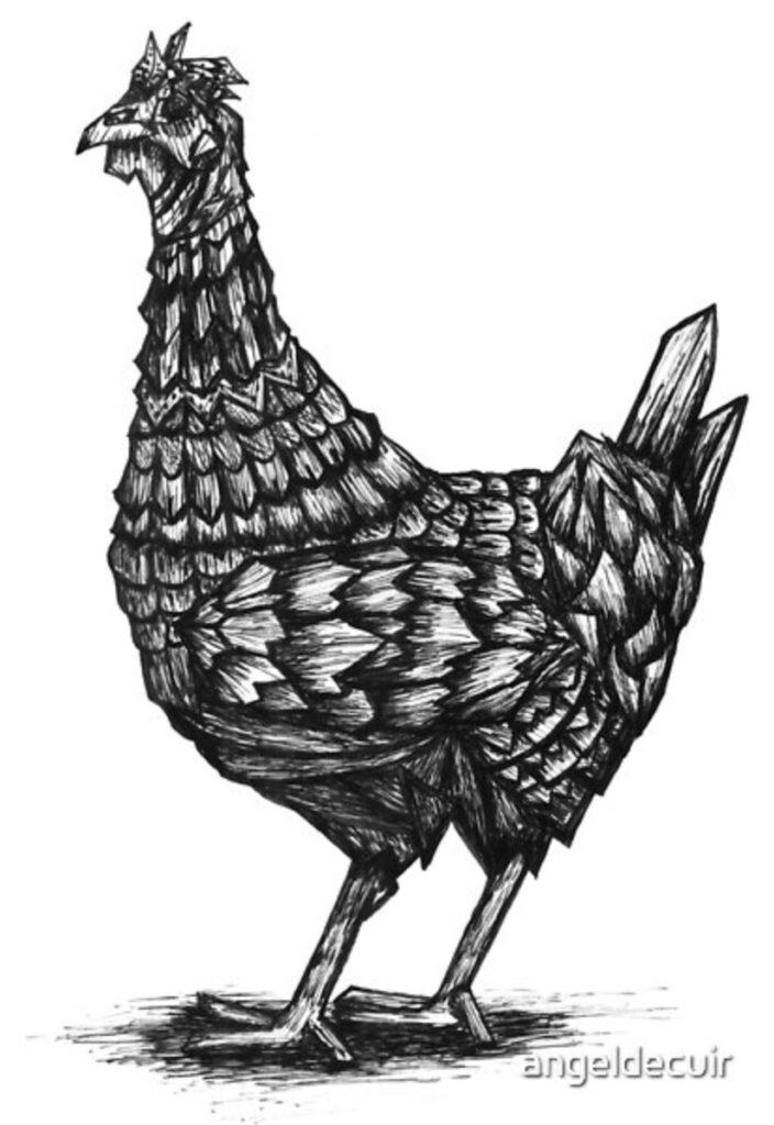chicken poly